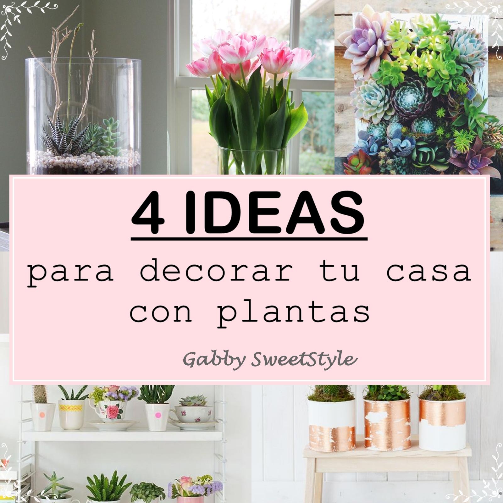 Cuatro ideas para decorar tu casa con plantas